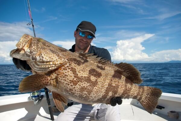 Grouper Fishing Tips