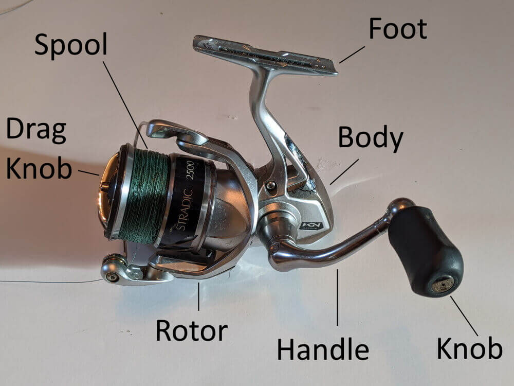 The Parts Of A Spinning Reel