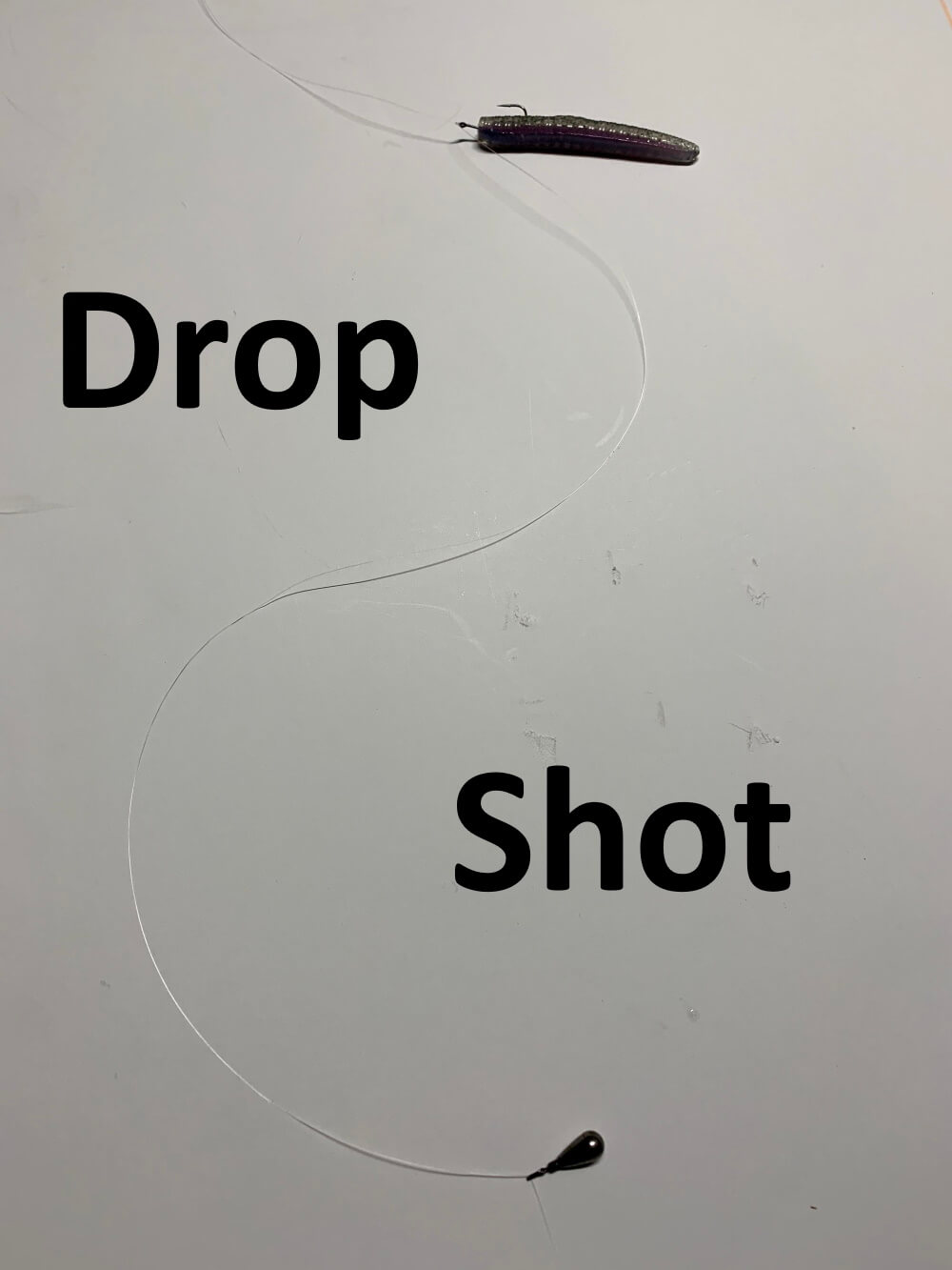 Drop Shot Rig Guide